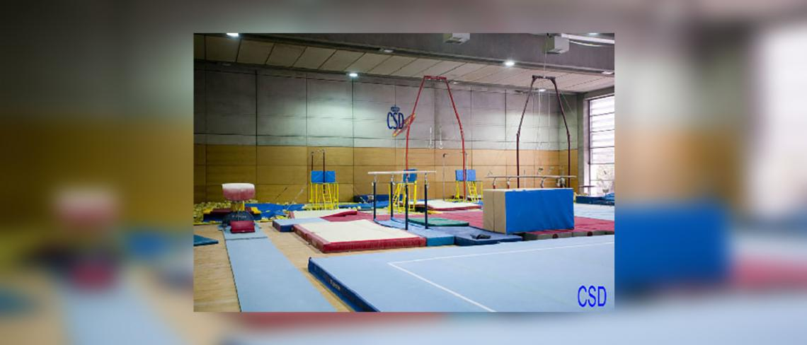 Artistic gymnastics room male High Performance centre of Higher Council of sports, Madrid
